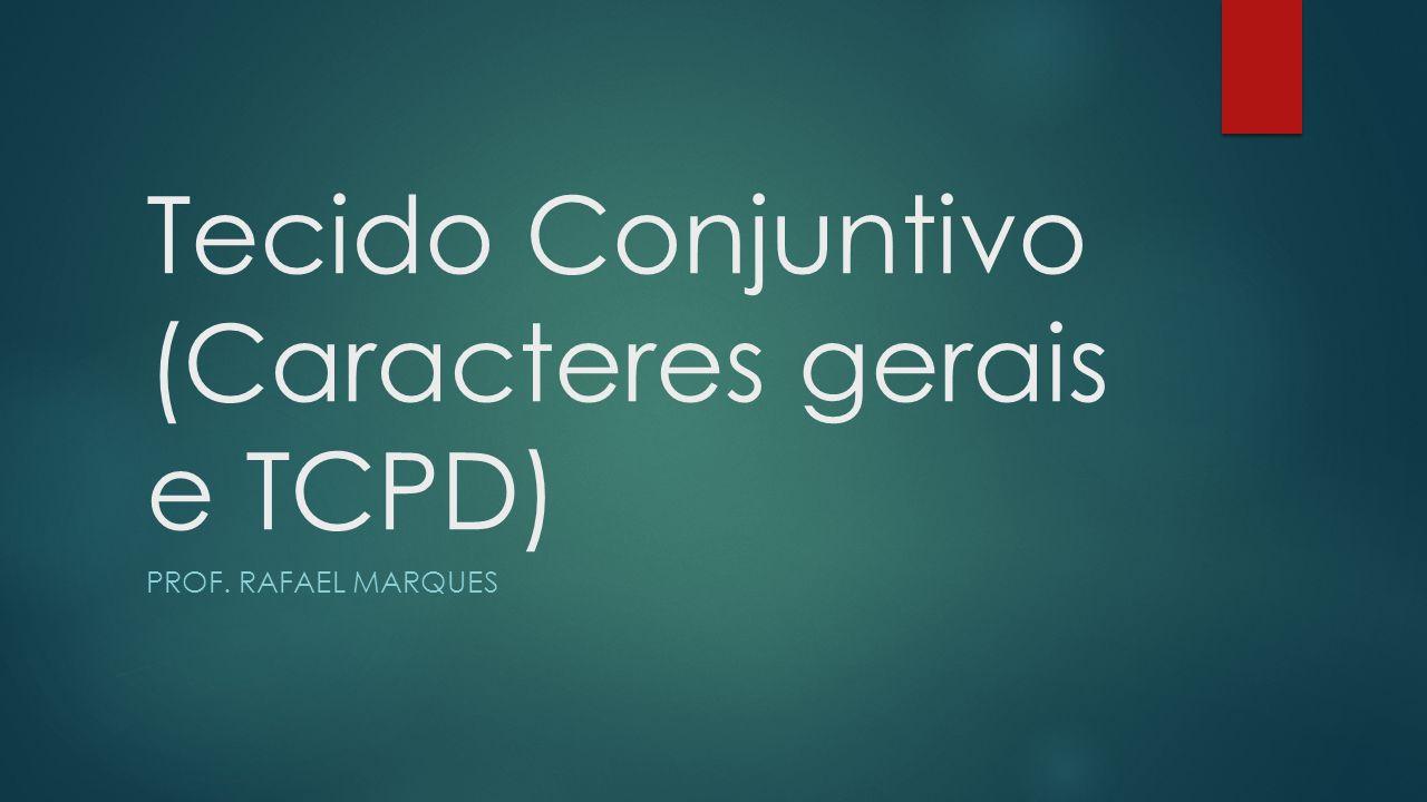 Tecido Conjuntivo (Caracteres gerais e TCPD) PROF. RAFAEL MARQUES