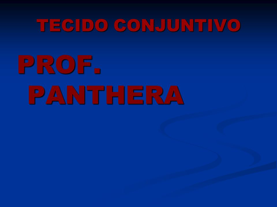 TECIDO CONJUNTIVO PROF. PANTHERA
