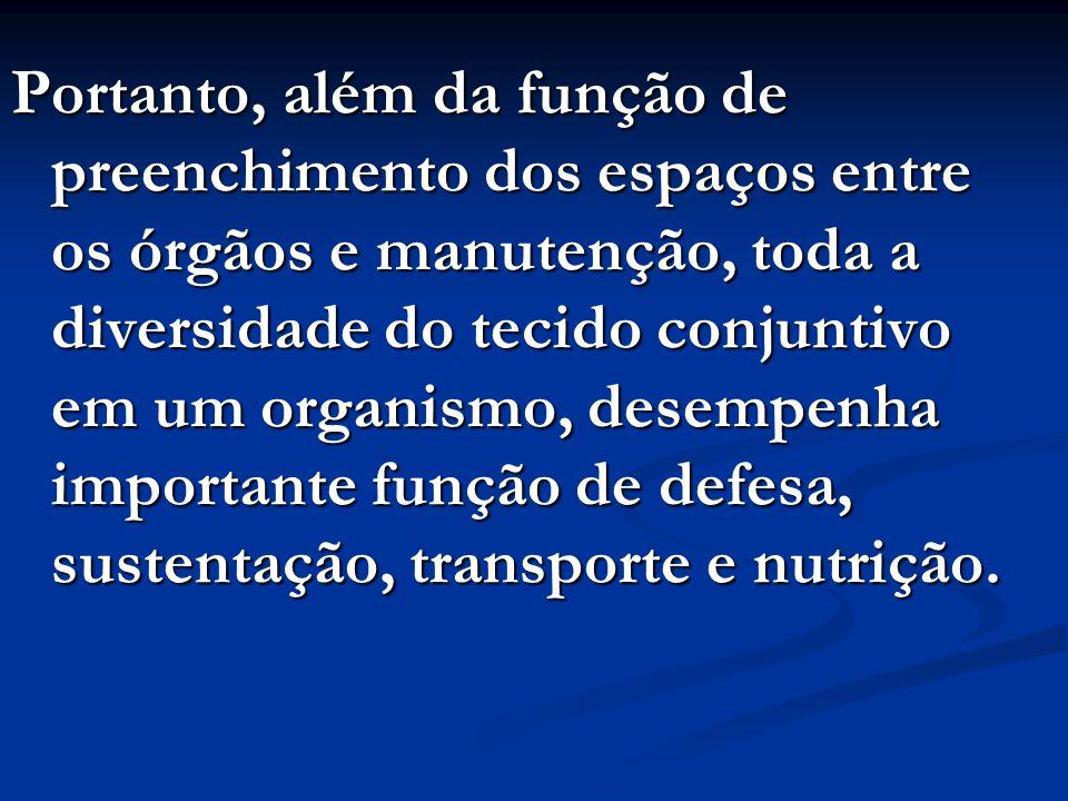 Portanto, além da função de preenchimento dos espaços entre os órgãos e manutenção, toda a diversidade do tecido conjuntivo em um organismo, desempenh