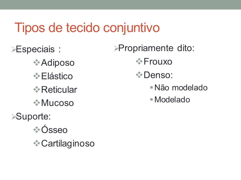 Tipos de tecido conjuntivo  Especiais :  Adiposo  Elástico  Reticular  Mucoso  Suporte:  Ósseo  Cartilaginoso  Propriamente dito:  Frouxo  Denso:  Não modelado  Modelado