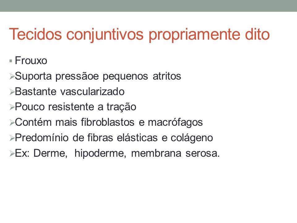 Tecidos conjuntivos propriamente dito  Frouxo  Suporta pressãoe pequenos atritos  Bastante vascularizado  Pouco resistente a tração  Contém mais