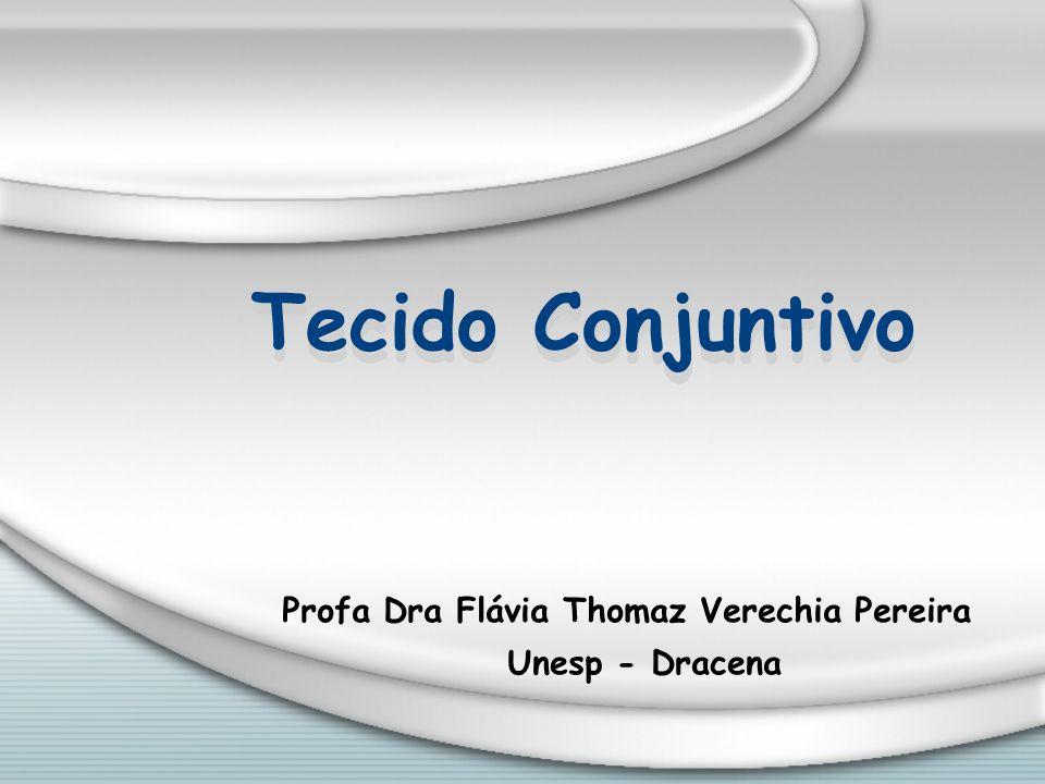 Tecido Conjuntivo Profa Dra Flávia Thomaz Verechia Pereira Unesp - Dracena