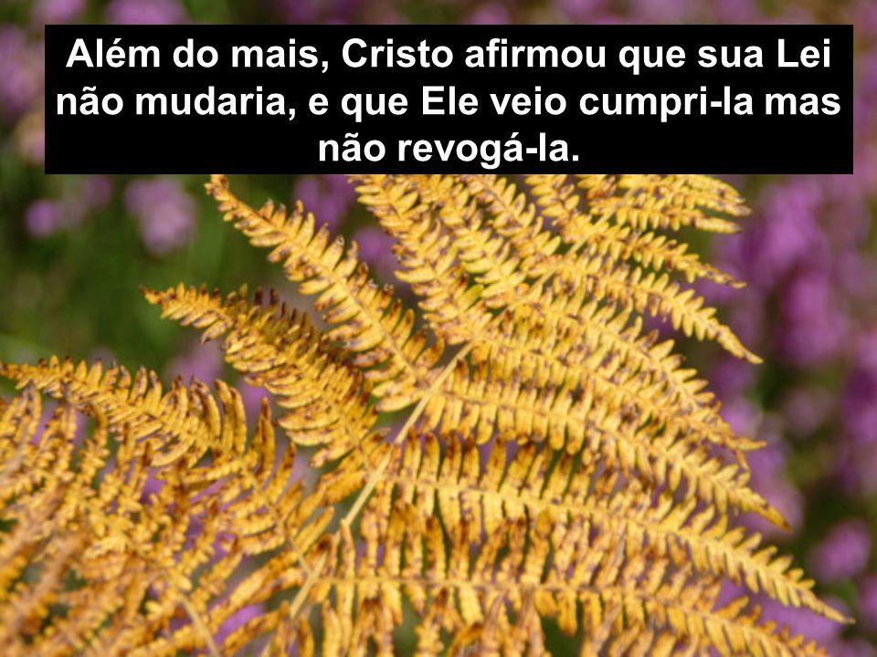 Além do mais, Cristo afirmou que sua Lei não mudaria, e que Ele veio cumpri-la mas não revogá-la.
