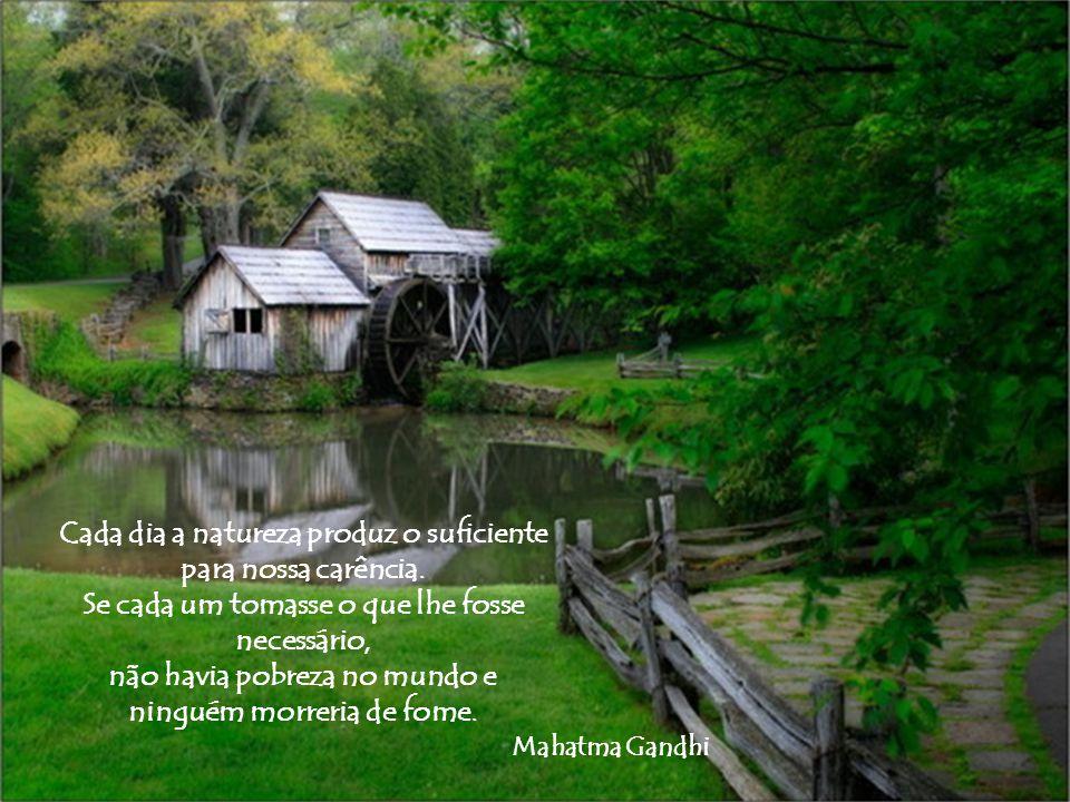 O amor é uma experiência pela qual todo o nosso ser é renovado e refrescado como o são as plantas pela chuva após a seca.