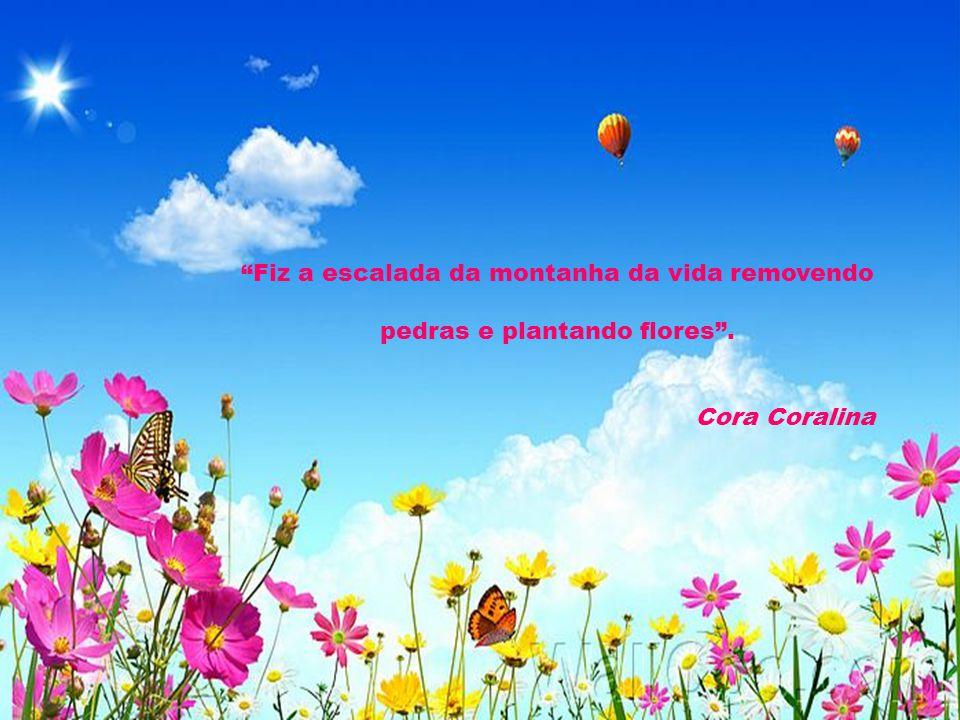 """""""Todos querem o perfume das flores, mas poucos sujam as suas mãos para cultivá-las"""". Augusto Cury"""