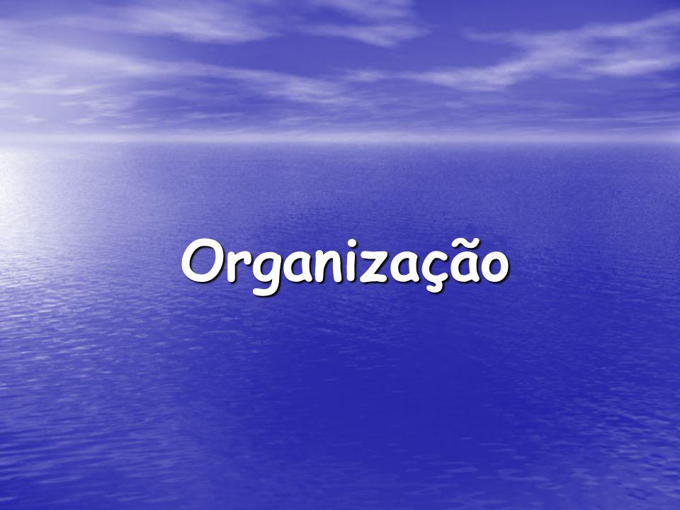 O que é Organização.