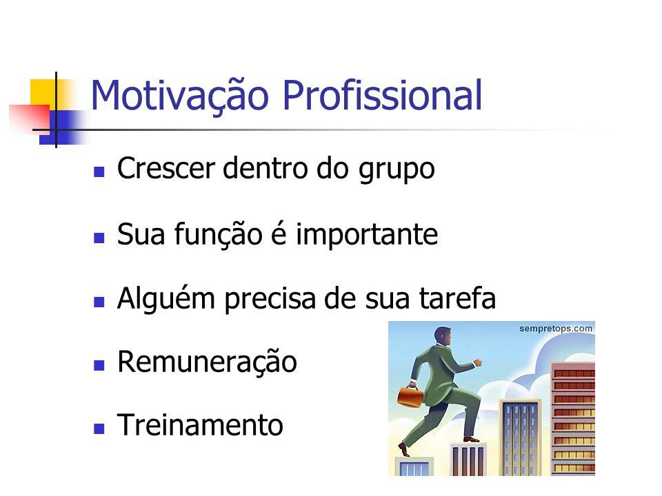 Motivação Profissional Crescer dentro do grupo Sua função é importante Alguém precisa de sua tarefa Remuneração Treinamento