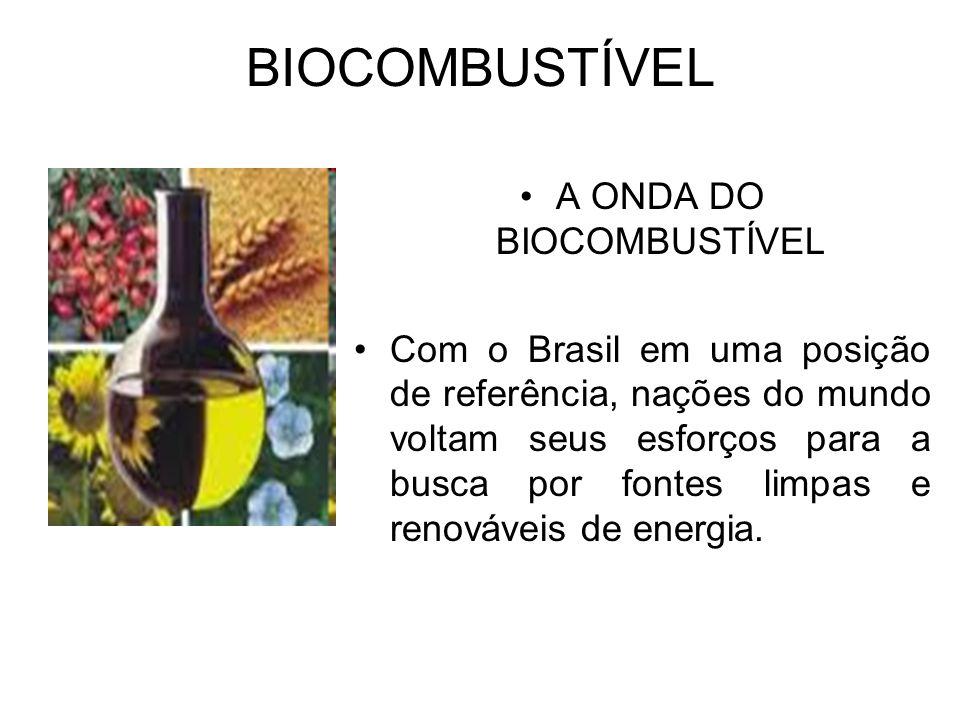 BIOCOMBUSTÍVEL A ONDA DO BIOCOMBUSTÍVEL Com o Brasil em uma posição de referência, nações do mundo voltam seus esforços para a busca por fontes limpas