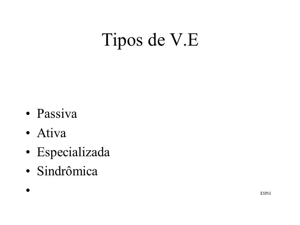 Tipos de dados utilizados pela V.E 1 São utilizados diferentes tipos de dados.Dentro de cada um desses tipos, é diversa a informação que se pode obter.