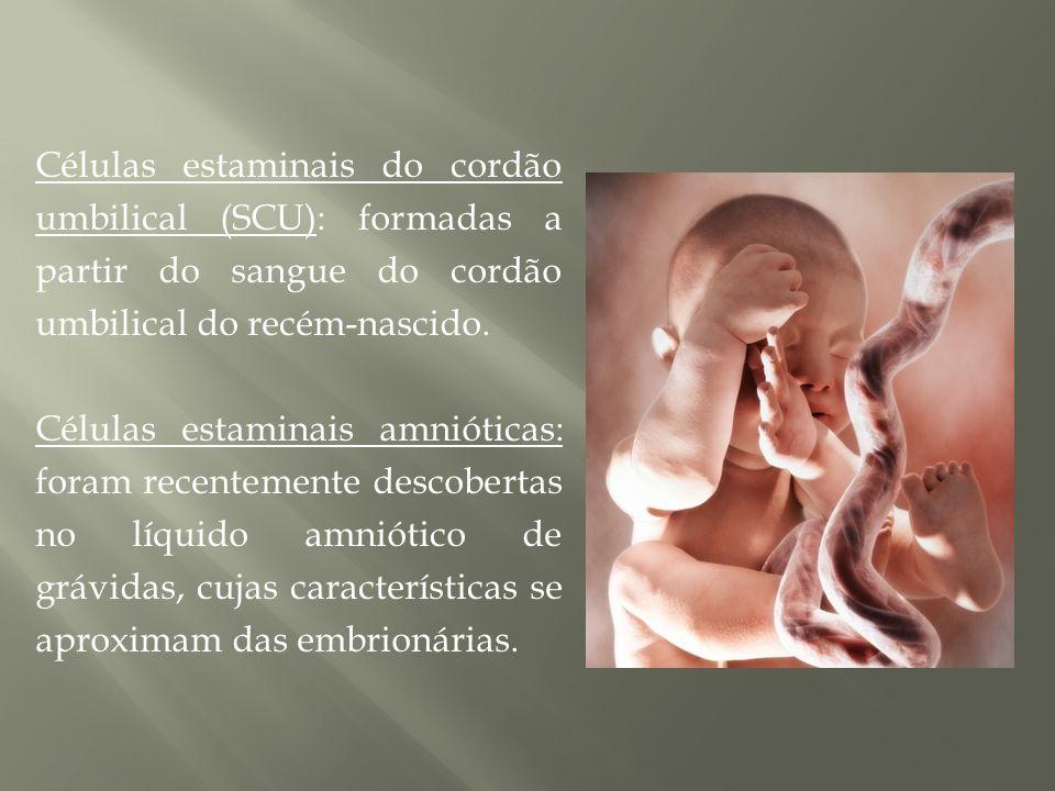 Células estaminais da placenta (sangue placentário): são retiradas sem afectar a mãe ou a criança (particularidade); são também 100% compatíveis com o bebé caso este venha alguma vez a desenvolver uma doença.