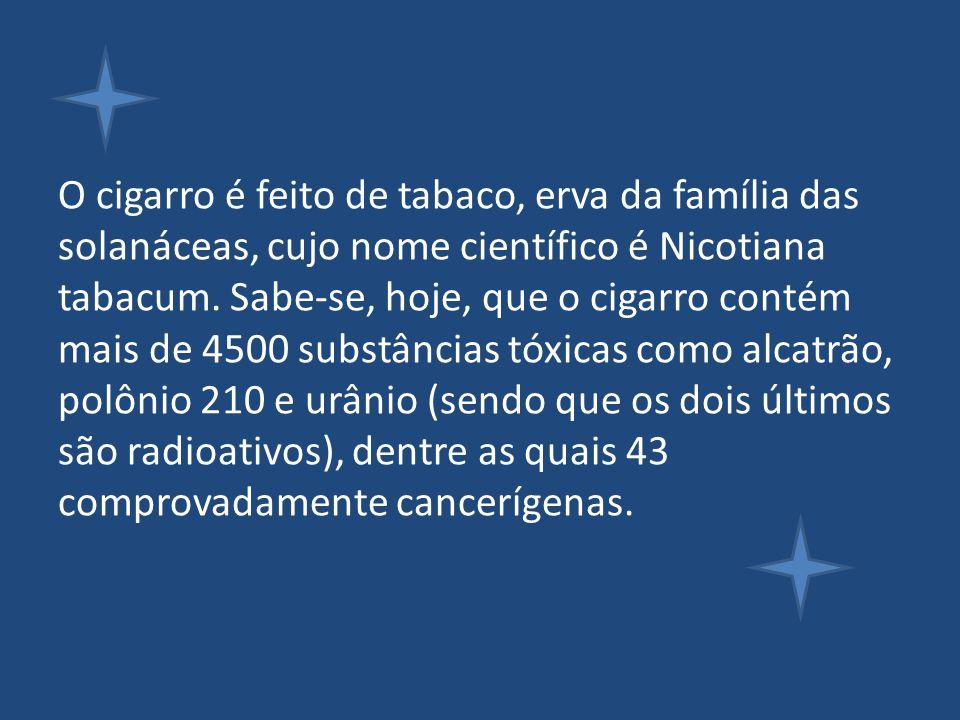 O cigarro é feito de tabaco, erva da família das solanáceas, cujo nome científico é Nicotiana tabacum. Sabe-se, hoje, que o cigarro contém mais de 450