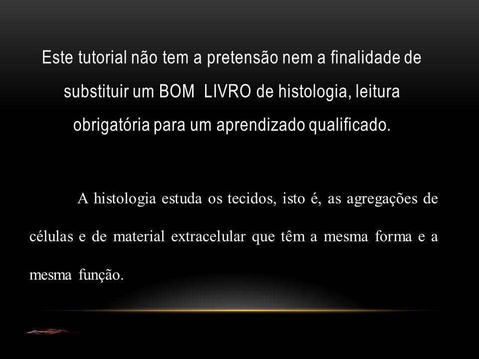Este tutorial não tem a pretensão nem a finalidade de substituir um BOM LIVRO de histologia, leitura obrigatória para um aprendizado qualificado. A hi