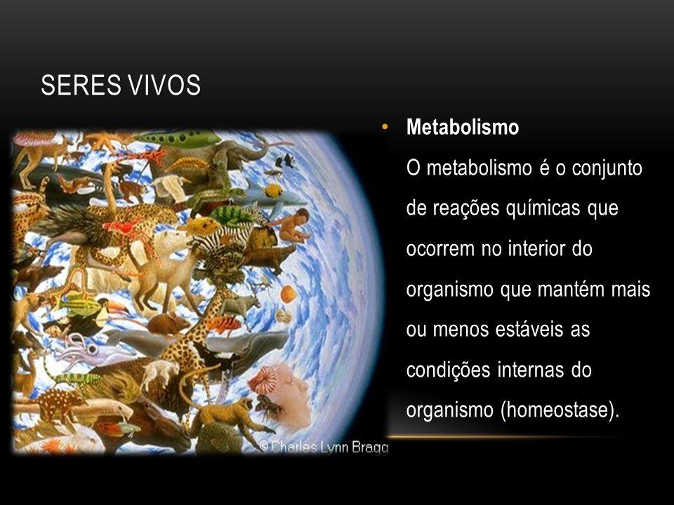 Metabolismo O metabolismo é o conjunto de reações químicas que ocorrem no interior do organismo que mantém mais ou menos estáveis as condições interna
