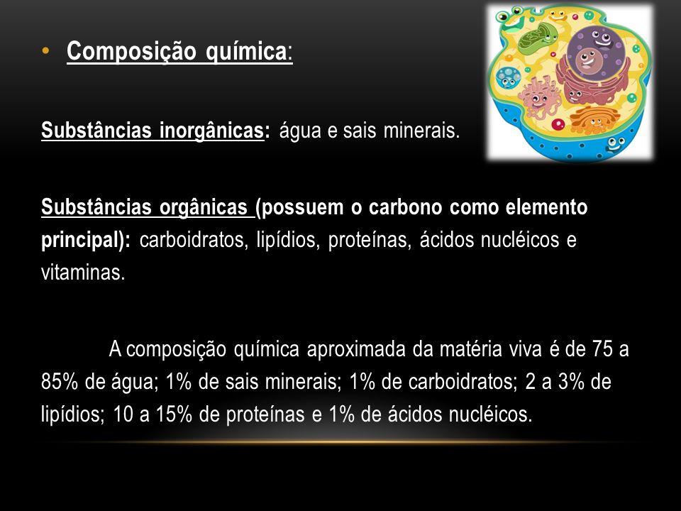 Composição química : Substâncias inorgânicas: água e sais minerais. Substâncias orgânicas (possuem o carbono como elemento principal): carboidratos, l