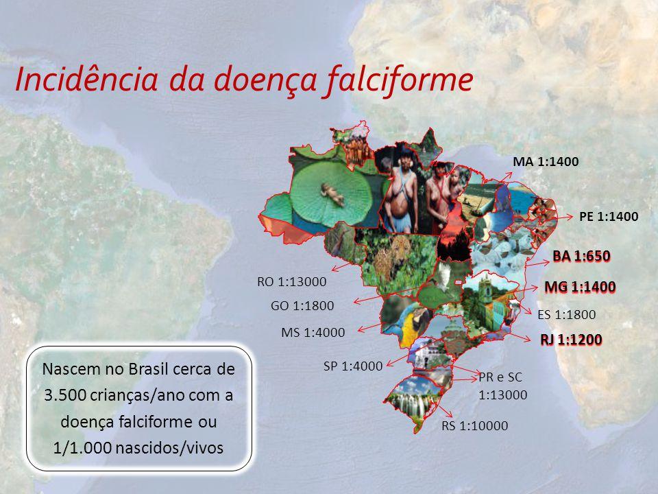 Incidência da doença falciforme Nascem no Brasil cerca de 3.500 crianças/ano com a doença falciforme ou 1/1.000 nascidos/vivos MA 1:1400 BA 1:650 MG 1