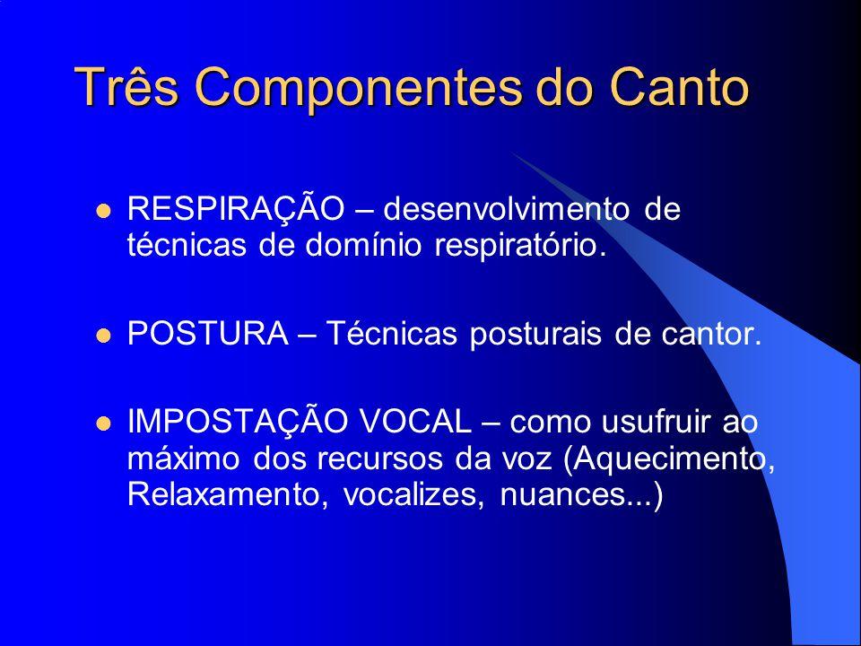 Três Componentes do Canto RESPIRAÇÃO – desenvolvimento de técnicas de domínio respiratório. POSTURA – Técnicas posturais de cantor. IMPOSTAÇÃO VOCAL –