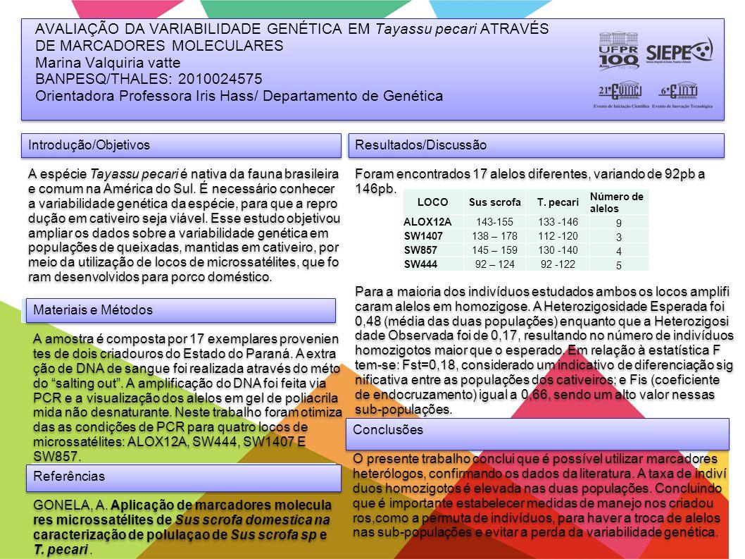 AVALIAÇÃO DA VARIABILIDADE GENÉTICA EM Tayassu pecari ATRAVÉS DE MARCADORES MOLECULARES Marina Valquiria vatte BANPESQ/THALES: 2010024575 Orientadora