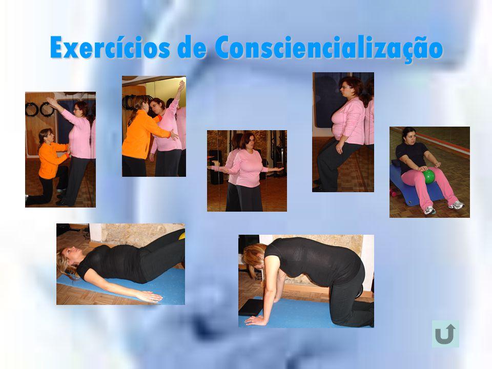 Adaptações ao Exercício  Aptidão Muscular  Exercícios de Consciencialização;  Exercícios de Força;  Exercícios de Alongamento;