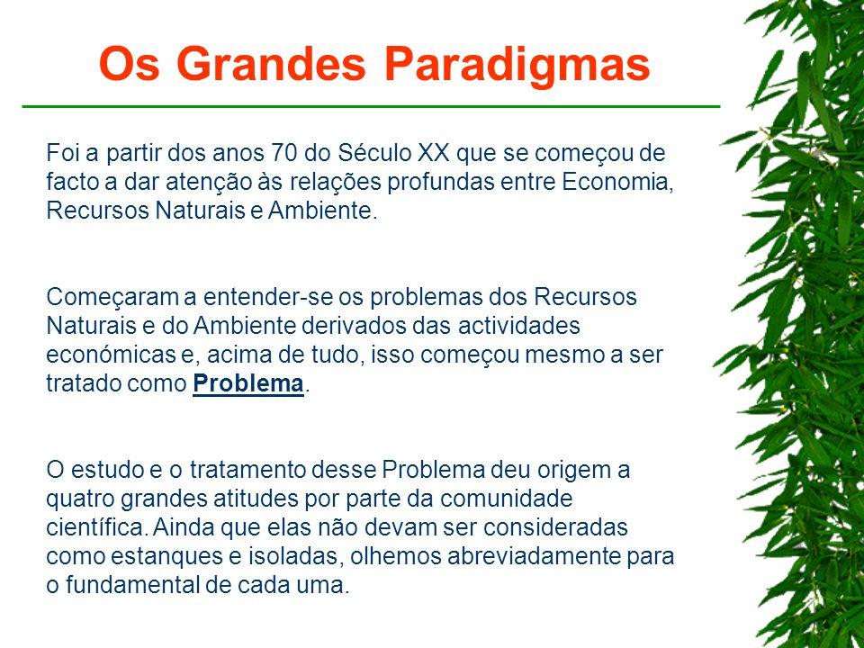 Os Grandes Paradigmas Foi a partir dos anos 70 do Século XX que se começou de facto a dar atenção às relações profundas entre Economia, Recursos Naturais e Ambiente.