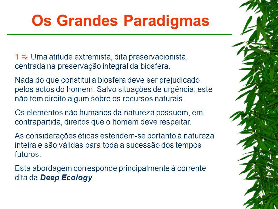 Os Grandes Paradigmas 1  Uma atitude extremista, dita preservacionista, centrada na preservação integral da biosfera.