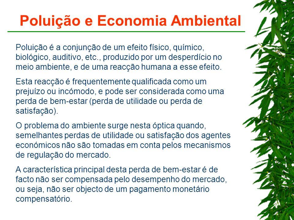 Poluição e Economia Ambiental Poluição é a conjunção de um efeito físico, químico, biológico, auditivo, etc., produzido por um desperdício no meio ambiente, e de uma reacção humana a esse efeito.
