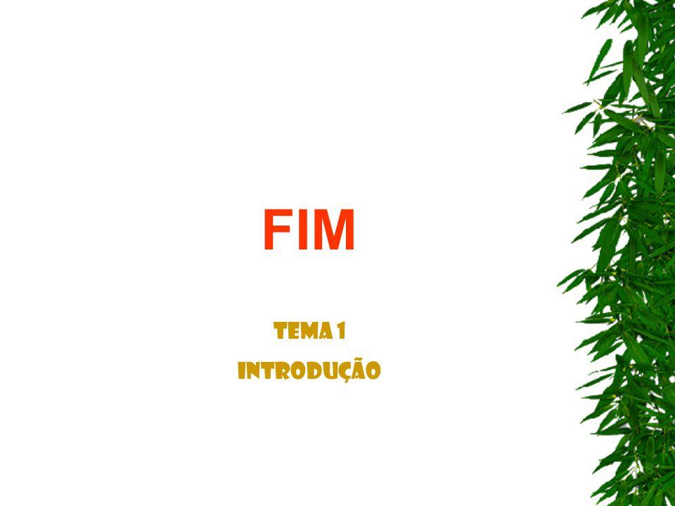 FIM Tema 1 Introdução