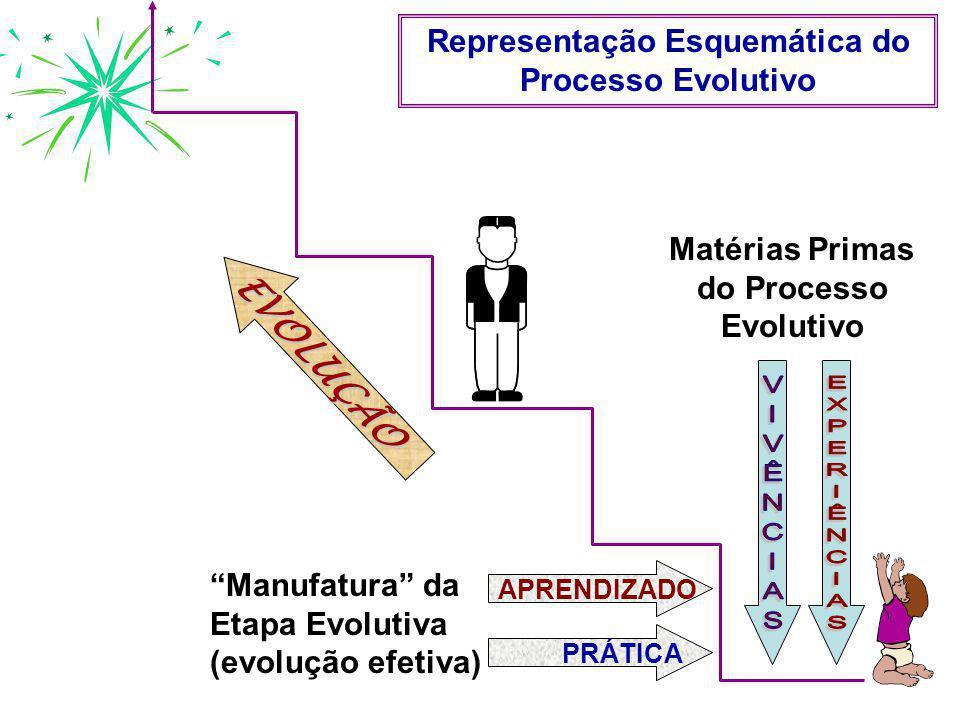 """APRENDIZADOPRÁTICA Matérias Primas do Processo Evolutivo """"Manufatura"""" da Etapa Evolutiva (evolução efetiva) EVOLUÇÃO Representação Esquemática do Proc"""