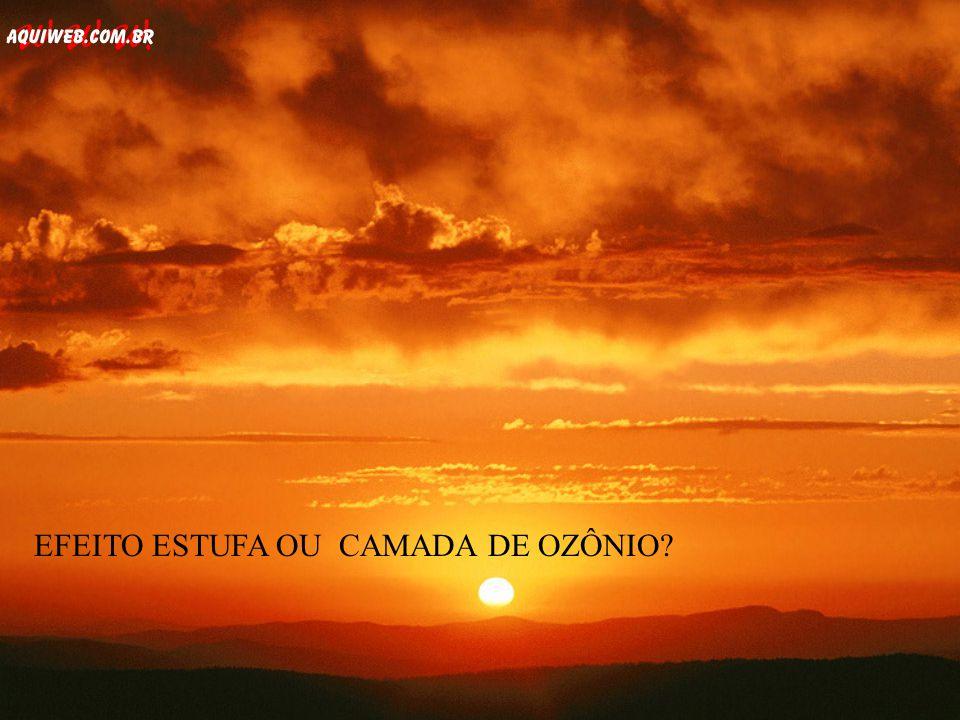 EFEITO ESTUFA OU CAMADA DE OZÔNIO EFEITO ESTUFA OU CAMADA DE OZÔNIO?