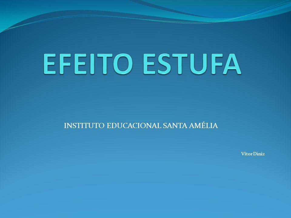 INSTITUTO EDUCACIONAL SANTA AMÉLIA Vítor Diniz