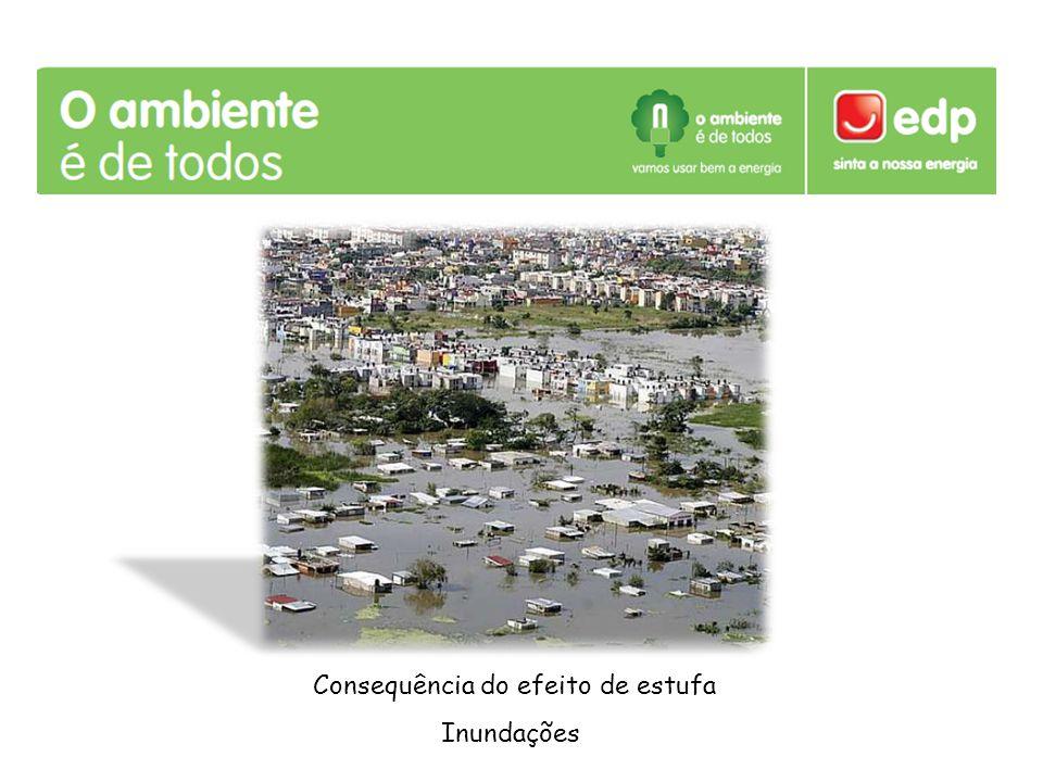 Consequência do efeito de estufa Inundações