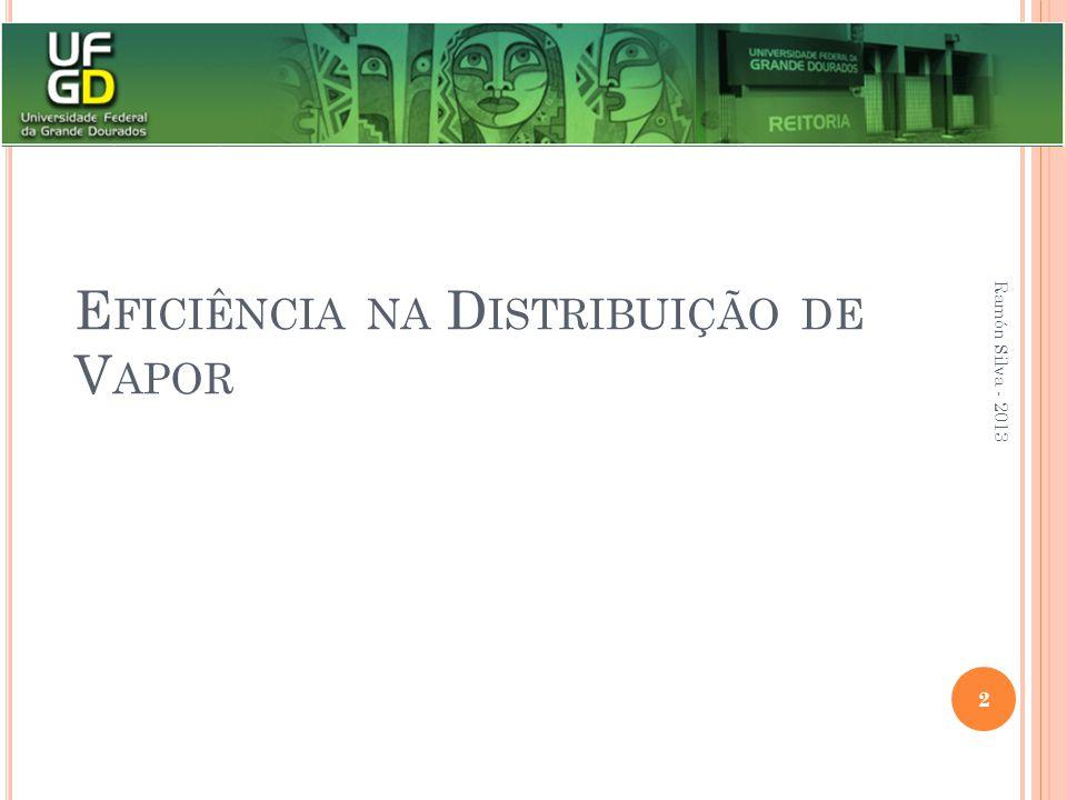 E FICIÊNCIA NA D ISTRIBUIÇÃO DE V APOR Ramón Silva - 2013 2