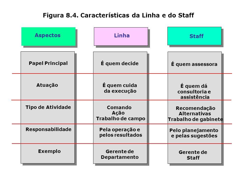 Figura 8.3. Funções de um órgão de Staff Nível Institucional Nível Intermediário Nível Operacional Consultoria Assessoramento Aconselhamento Recomenda