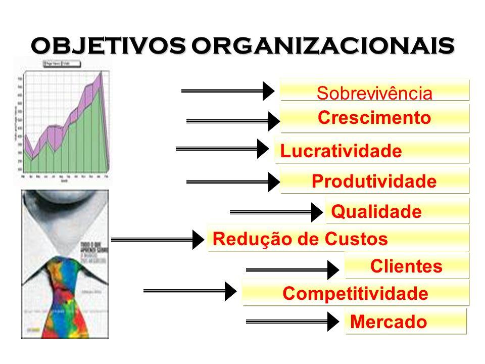 OBJETIVOS ORGANIZACIONAIS Sobrevivência Crescimento Lucratividade Produtividade Qualidade Redução de Custos Mercado Clientes Competitividade