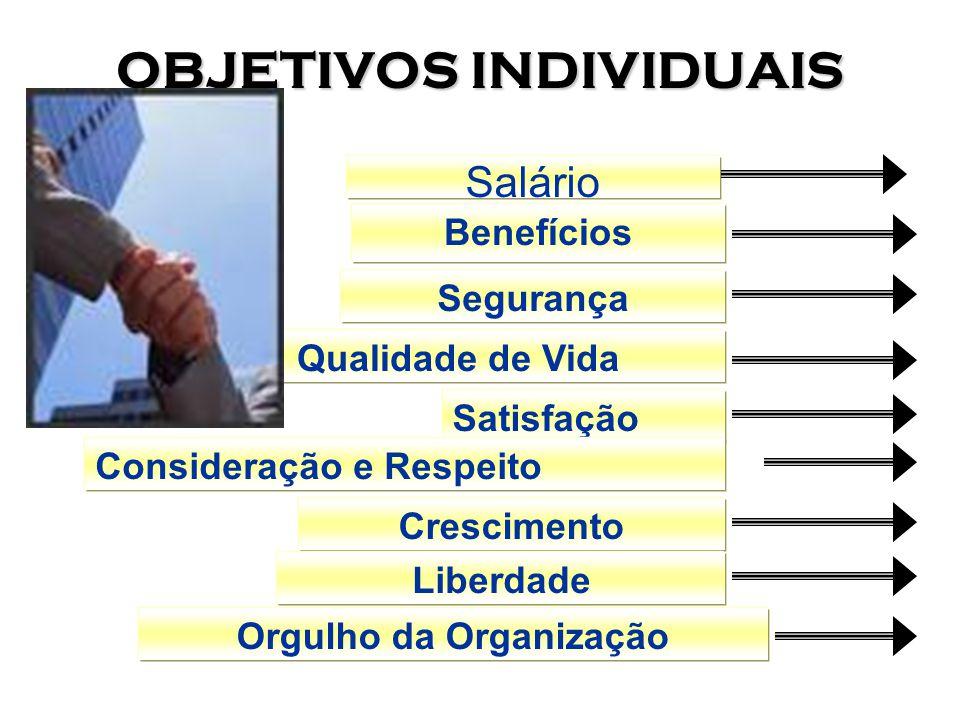 Ambiente Organizacional 1.Interdependência das organizações com a sociedade.