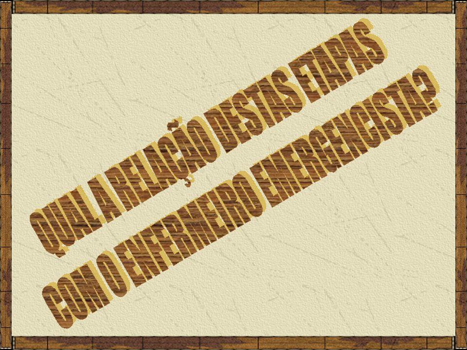 Justificativa; Clientela alvo; Objetivo geral; Objetivos específicos; Recursos materiais e humanos; Local(is) para desenvolvimento das atividades; Procedimentos para operacionalização; Avaliação dos resultados; Cronograma de desenvolvimento do plano; Referências bibliográficas.