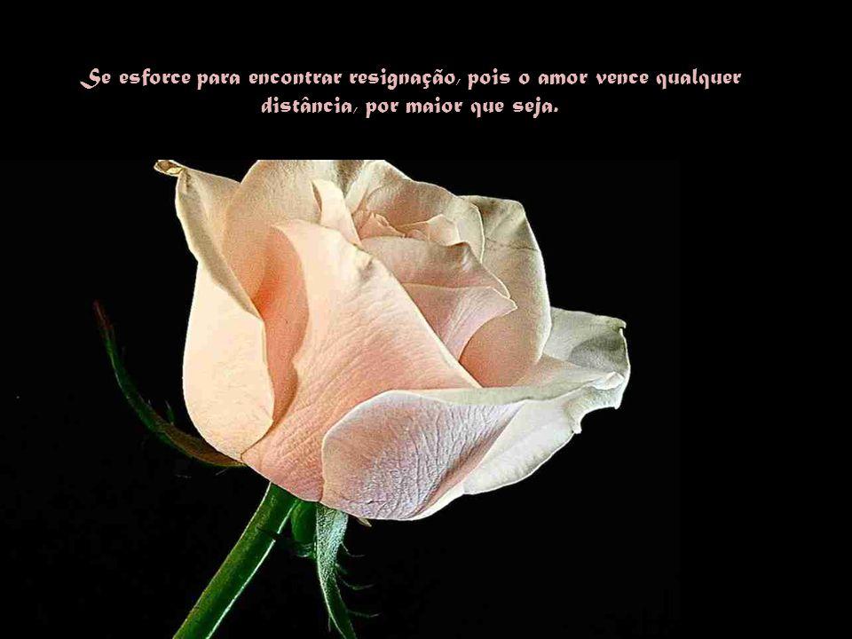 """Por isso aceite com serenidade os desígnios de Deus e tenha certeza de que eles, os chamados """"mortos"""" prosseguem vivendo e esperando por ti."""