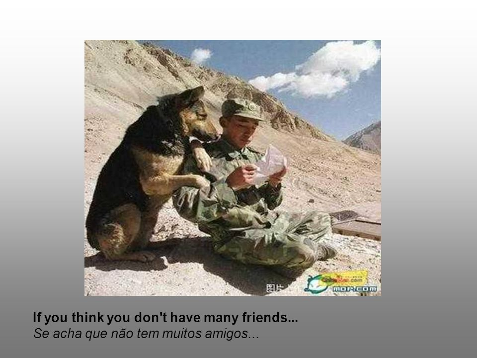 If you think you don t have many friends... Se acha que não tem muitos amigos...