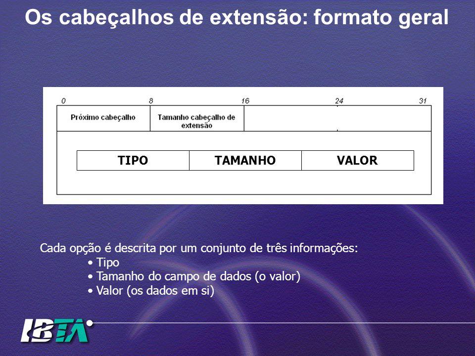 Os cabeçalhos de extensão: formato geral Cada opção é descrita por um conjunto de três informações: Tipo Tamanho do campo de dados (o valor) Valor (os
