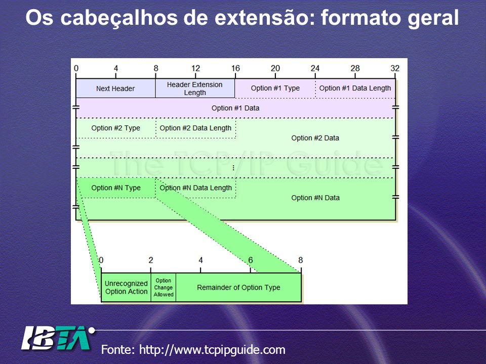 Os cabeçalhos de extensão: formato geral Fonte: http://www.tcpipguide.com