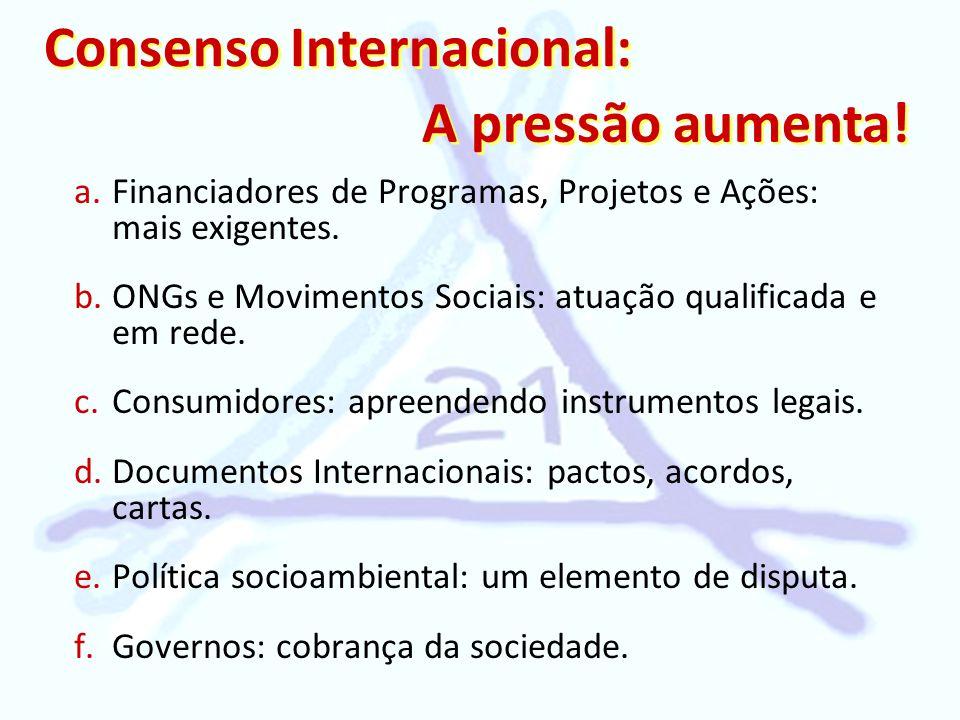 Consenso Internacional: a.Financiadores de Programas, Projetos e Ações: mais exigentes. b.ONGs e Movimentos Sociais: atuação qualificada e em rede. c.