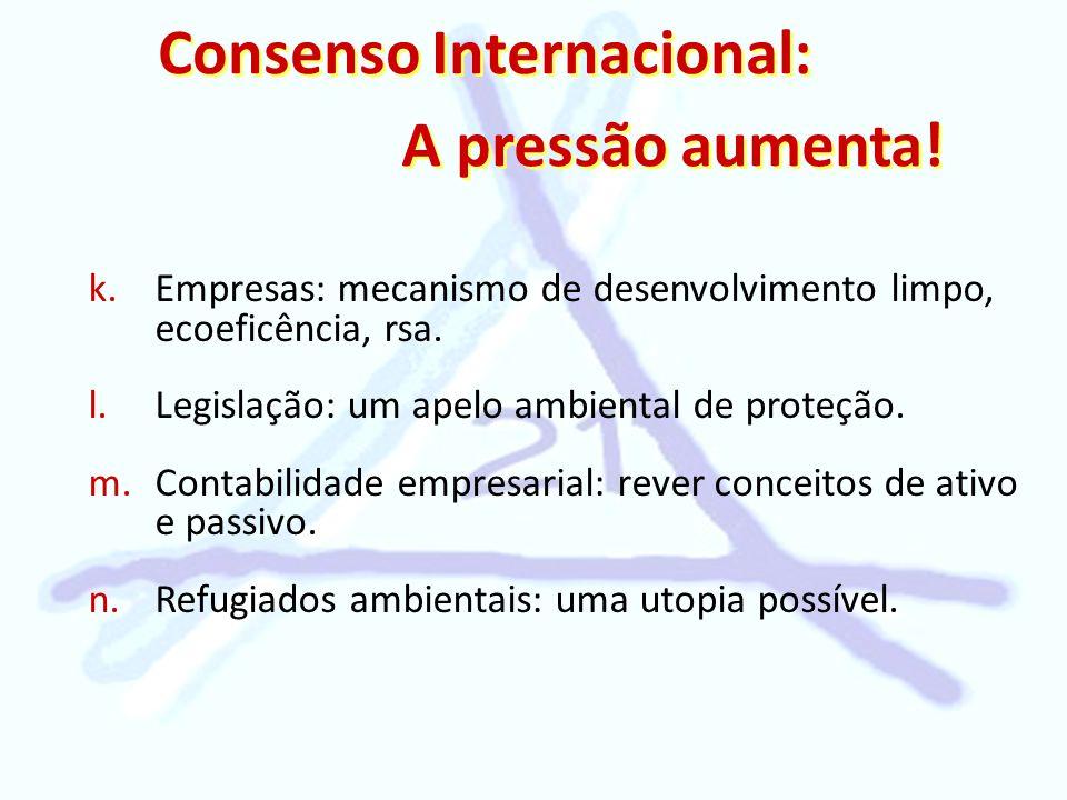 Consenso Internacional: A pressão aumenta! k. k.Empresas: mecanismo de desenvolvimento limpo, ecoeficência, rsa. l. l.Legislação: um apelo ambiental d