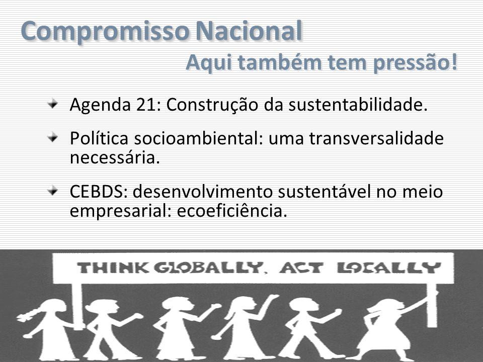 Compromisso Nacional Agenda 21: Construção da sustentabilidade. Política socioambiental: uma transversalidade necessária. CEBDS: desenvolvimento suste