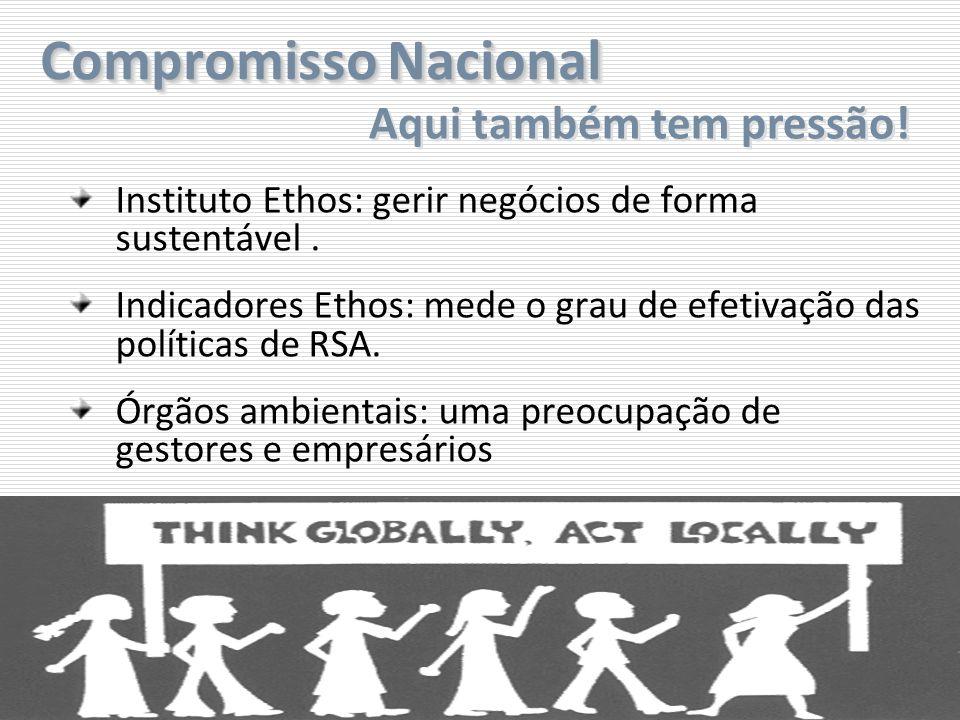 Compromisso Nacional Instituto Ethos: gerir negócios de forma sustentável. Indicadores Ethos: mede o grau de efetivação das políticas de RSA. Órgãos a