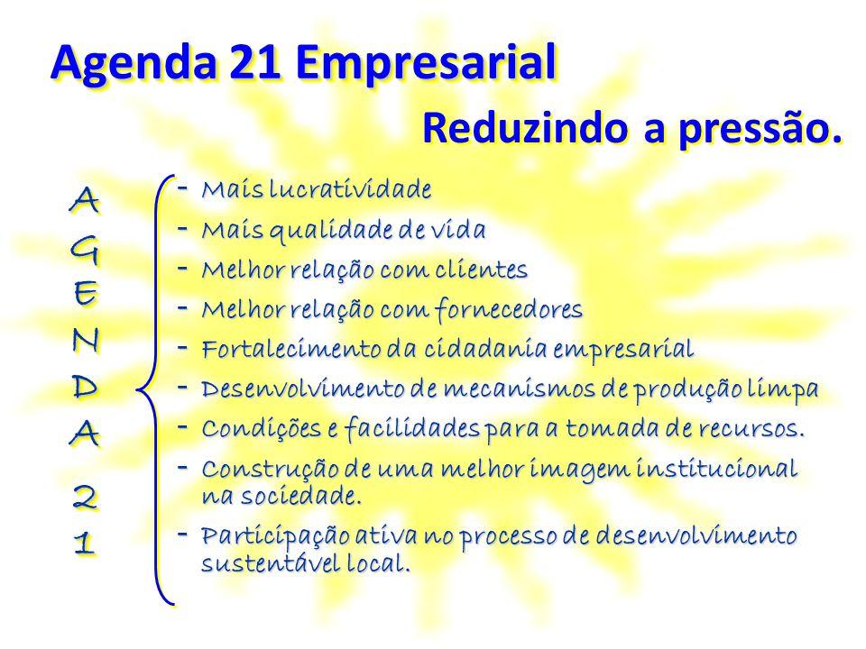 Agenda 21 Empresarial - Mais lucratividade - Mais qualidade de vida - Melhor relação com clientes - Melhor relação com fornecedores - Fortalecimento d