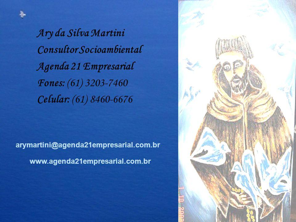 Ary da Silva Martini Consultor Socioambiental Agenda 21 Empresarial Fones: (61) 3203-7460 Celular: (61) 8460-6676 arymartini@agenda21empresarial.com.b