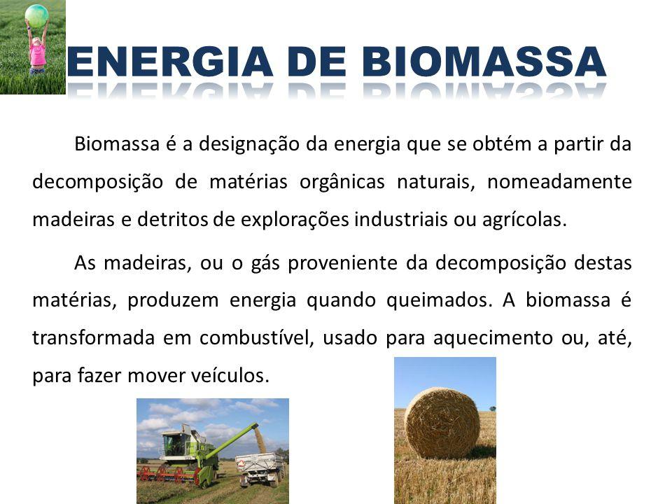 Biomassa é a designação da energia que se obtém a partir da decomposição de matérias orgânicas naturais, nomeadamente madeiras e detritos de exploraçõ