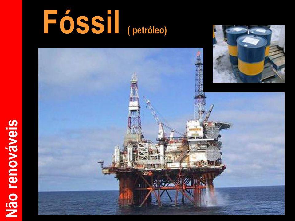 Fóssil ( petróleo)