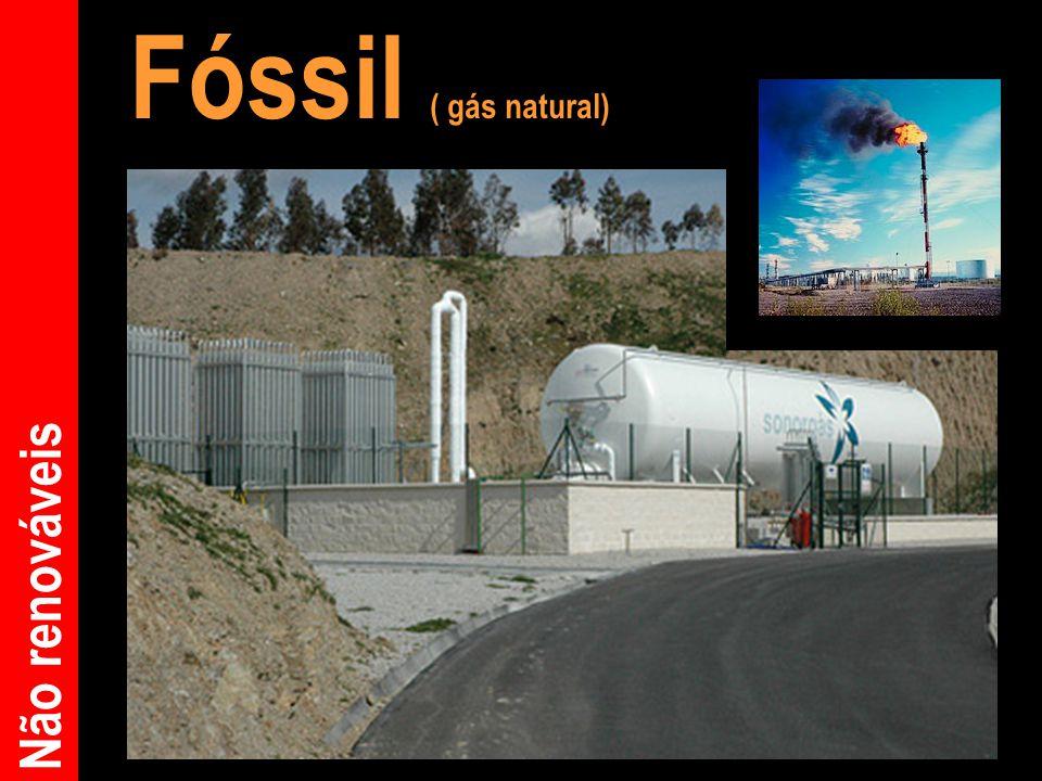 Fóssil ( gás natural) Não renováveis