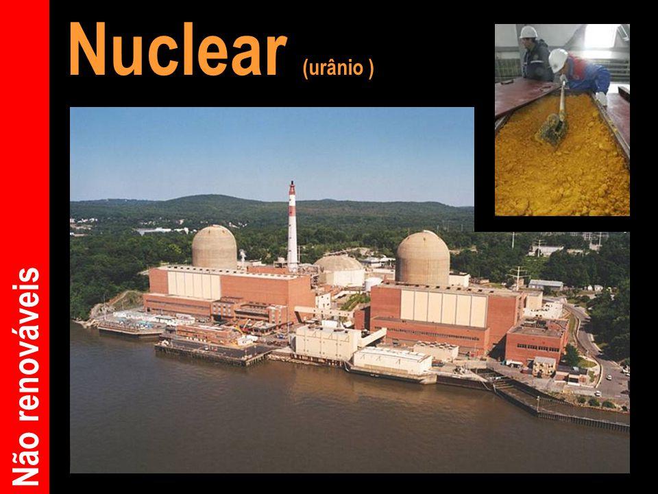 Nuclear (urânio ) Não renováveis