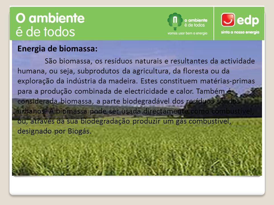 Energia de biomassa: São biomassa, os resíduos naturais e resultantes da actividade humana, ou seja, subprodutos da agricultura, da floresta ou da exp